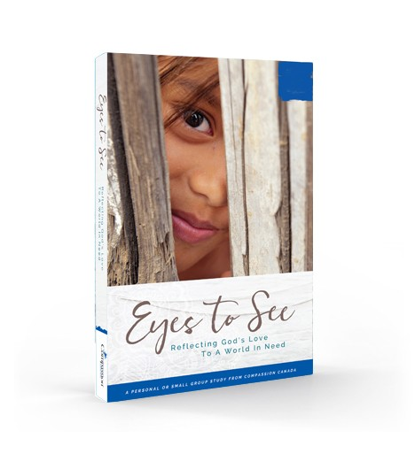 Eyes to See curriculum book